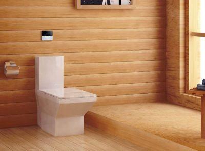 Nine Tips for Choosing a Toilet