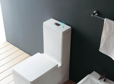 A Guide to the Best Automatic Toilet Flushers